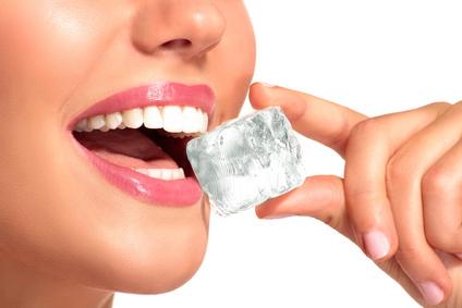 chewing-ice-dr-koshki